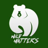 Wild Matters Blog